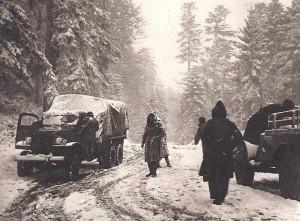Un convoi dans la forêt vosgienne